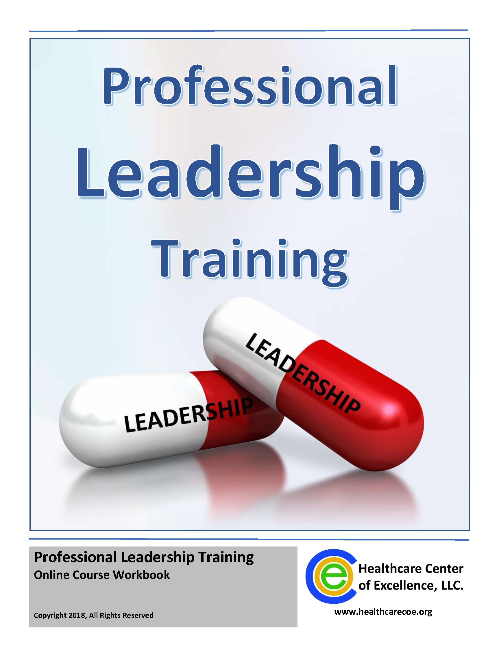 Professional Leadership Online Guided-Study Course - (Cohort 10/22/18)